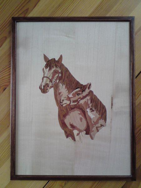 chevauxbusteencadr.jpg